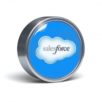 <strong>We provide the full range of services around salesforce.com (SFDC):</strong>